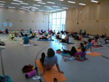 Faszien- Stretch- und Stabilisationstraining am 22.11.2015